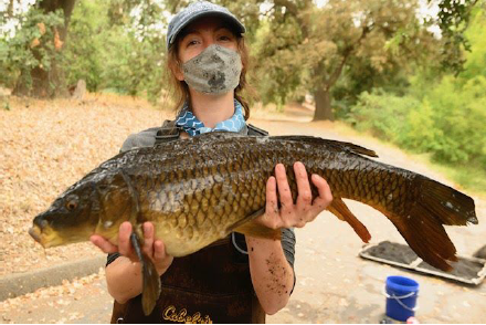 Photo depicts a young woman in a mask holding a large carp